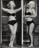 Marilyn Monroe As model for Earl Moran Foto 318 (Мэрилин Монро В качестве модели для графа Моран Фото 318)